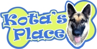 Kotas Place Dog Daycare